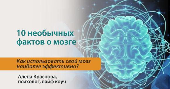 10 необычных фактов о работе мозга
