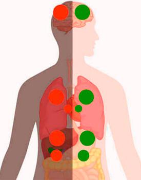 Практика   «Очищение кровных связей»