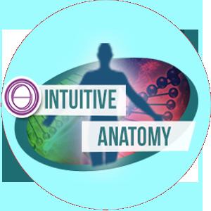 Курс ThetaHealing®  Интуитивная Анатомия
