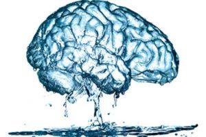Важность воды для здоровья мозга
