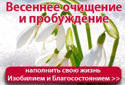 Открытые вебинары марта